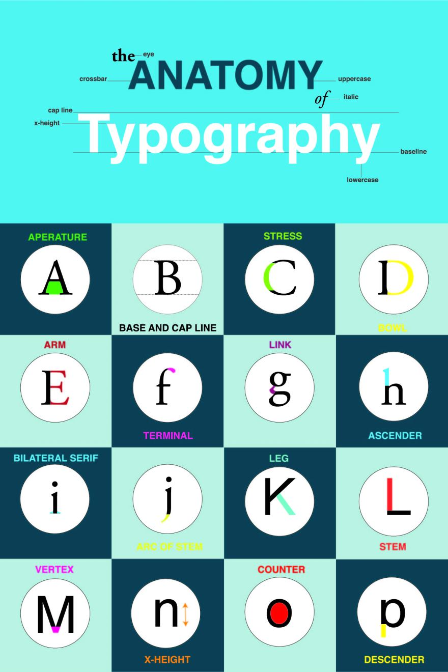 Anatomy of Type – CL Designs